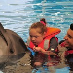 Delphintherapie Jennifer (Large)
