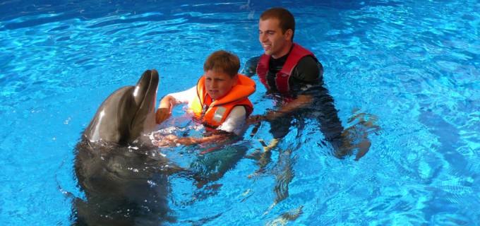 Wir organisieren Delphin- und andere wichtige Therapien. Helfen Sie mit.