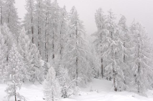 kinder wintercamp-_DSC4628