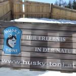 Husky Day DSC_3072 (Large)