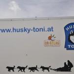Husky Day DSC_3200 (Large)