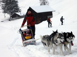 Wintercamp07-0373-niko von arctic wolf kennel gespann