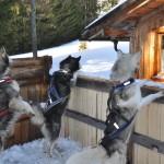 Kinder Wintercamp 2011 (39)