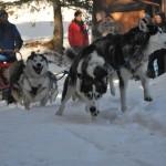 Kinder Wintercamp 2011 (54)