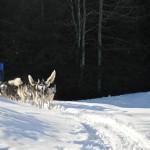 Kinder Wintercamp 2011 (74)