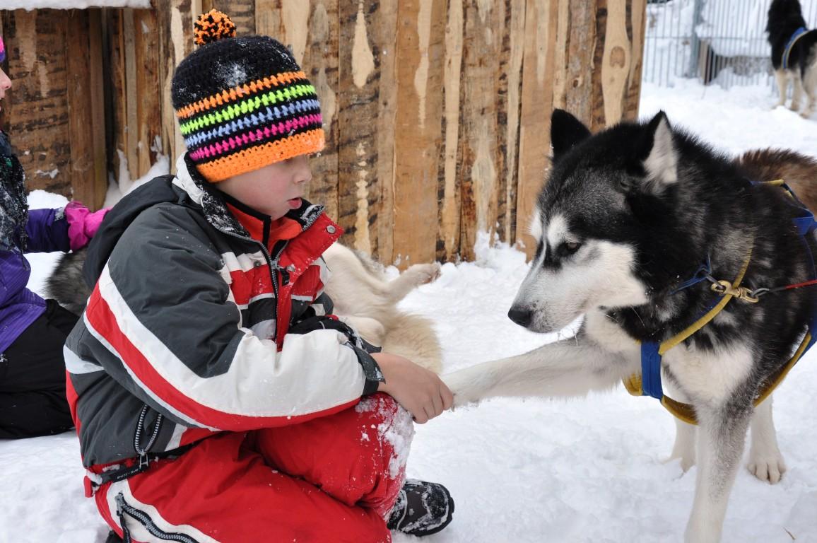 Kinder Wintercamp 12 (439) (Medium)