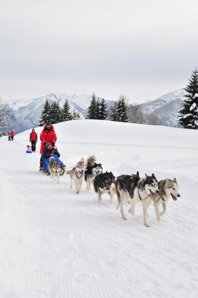 Kinder Wintercamp 12 (510) (Medium)